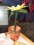 My flower pot that Sam made me.  It's a pen in some popcorn kernals
